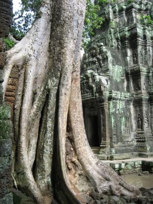 Angkor Wat (148)