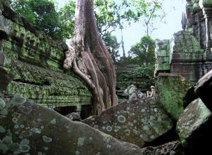 Angkor Wat (157)