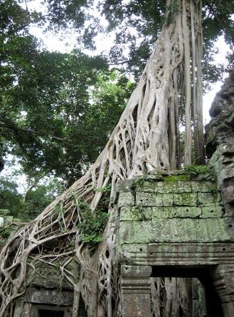 Angkor Wat (161)