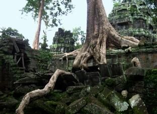 Angkor Wat (164)