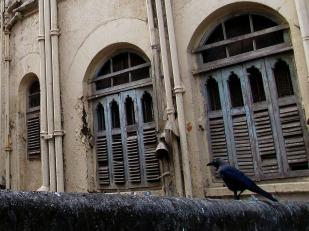 Mumbai (133)