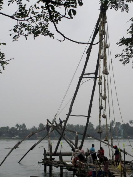 Kochi (4)