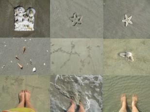 Regalos del mar