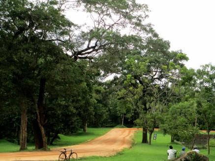 Sigirya (9)