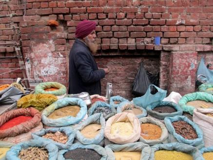 Amritsar (61)