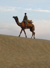 Desierto (97)