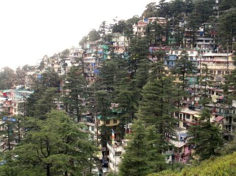 Dharamsala (14)