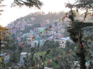 Dharamsala (36)