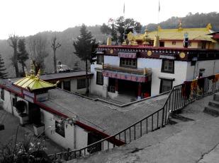 Dharamsala (38)
