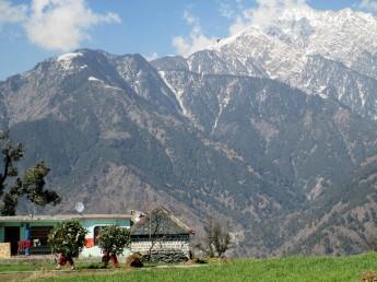 Dharamsala (50)
