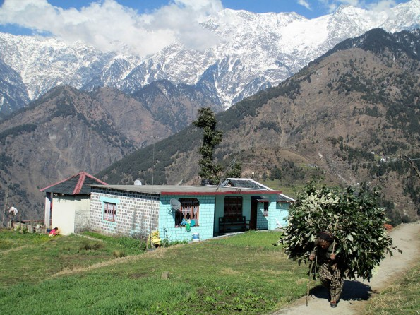 Dharamsala (54)