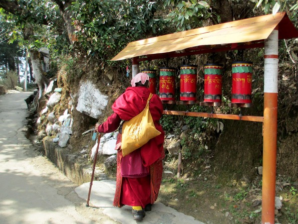 Dharamsala (79)