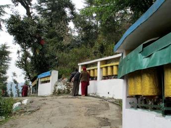 Dharamsala (80)