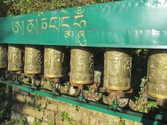 Dharamsala (81)