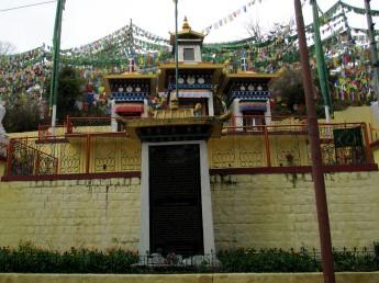 Dharamsala (85)