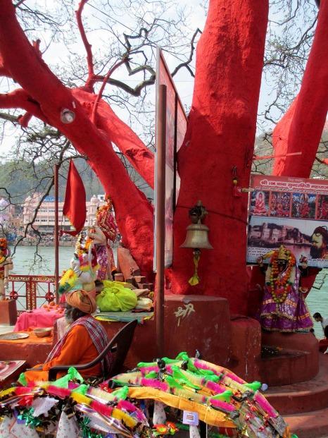 Haridwar (23)