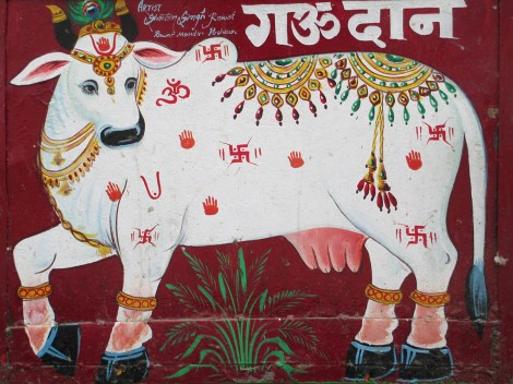 Pushkar (64)
