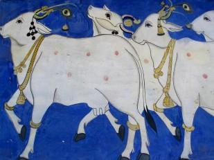 Udaipur (113)
