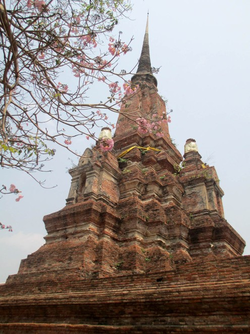 Ayutthaya (35)