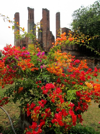 Ayutthaya (43)