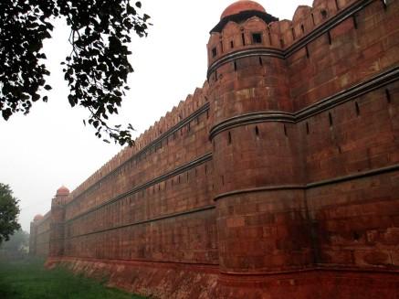 Delhi (31)