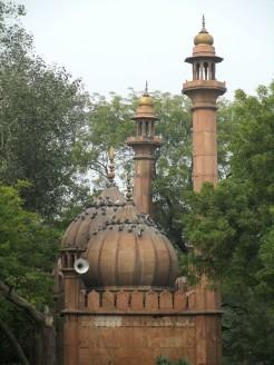 Delhi (38)