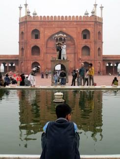 Delhi (66)