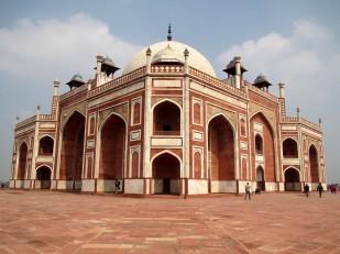 Delhi (89)