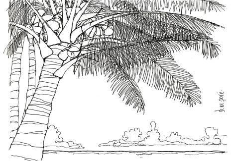 Dibujo Indonesia - Playa 1