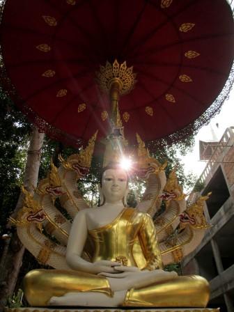 Koh Phangam (120)