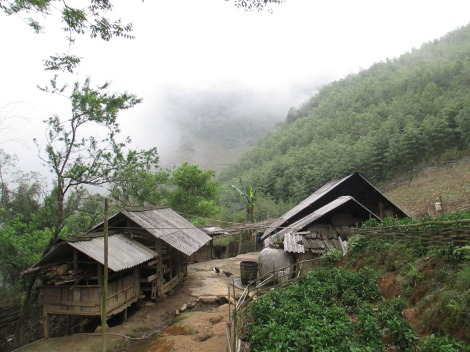 Hau Thao (208)