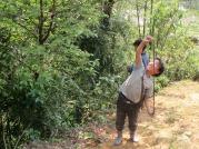 Hau Thao (58)