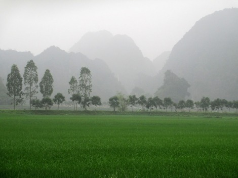 Ninh Binh (106)