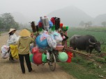 Ninh Binh (134)