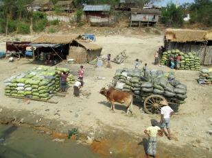 Ayeryawady River (14)