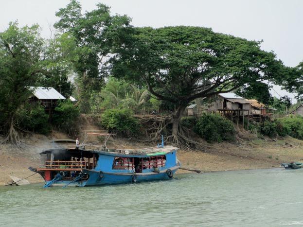 Ayeryawady River (35)