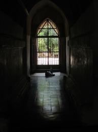 Bagan (117)