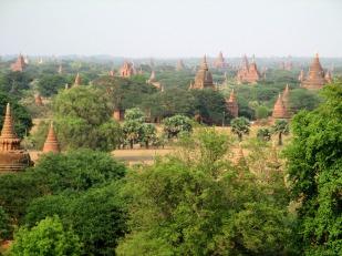 Bagan (65)