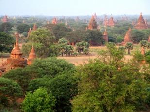 Bagan (72)