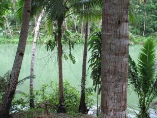 Bohol (3)
