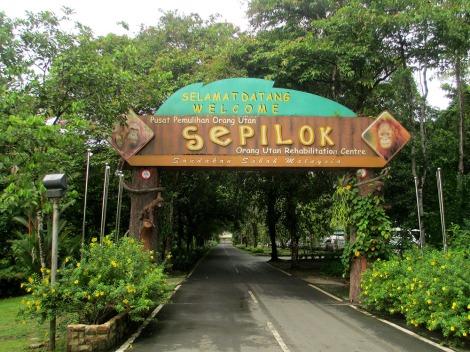 Sepilok (6)