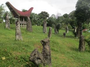 Tana Toraja (221)