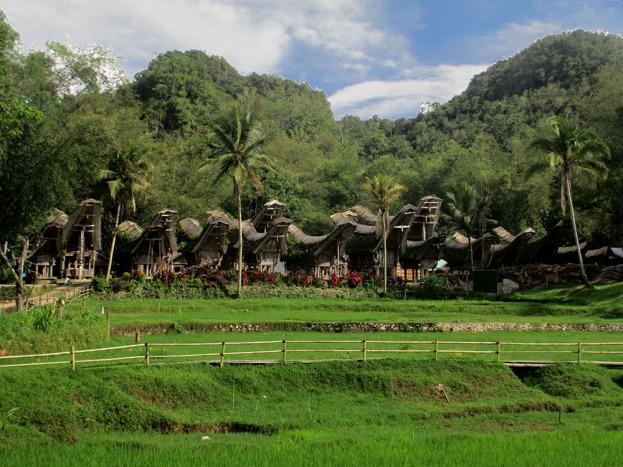 Tana Toraja (225)