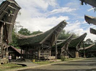 Tana Toraja (228)