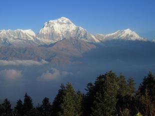 Annapurnas (138)