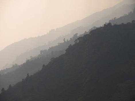 Annapurnas (260)