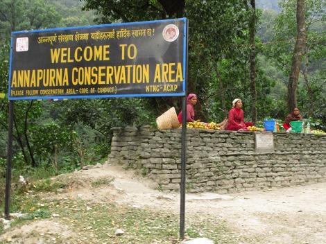 Annapurnas (6)