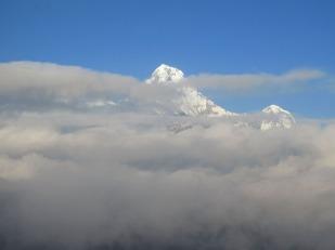 Annapurnas (98)
