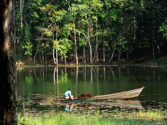 Chitwan (61)