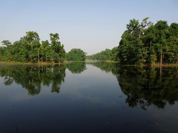 Chitwan (62)